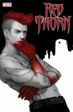 Red Thorn - David Baillie (W), Meghan Hetrick (A), Steve Oliff (C) DC/Vertigo Comics