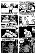 Youth Is Wasted (Noah Van Sciver; AdHouse Books)