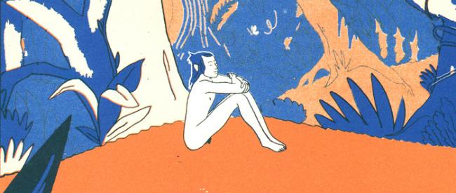 Mowgli's Mirror (Olivier Schrauwen; Retrofit Books)